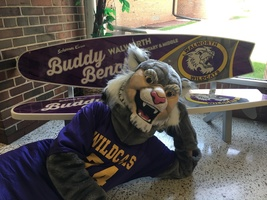 Walworth Welcomes New Wildcat Mascot!