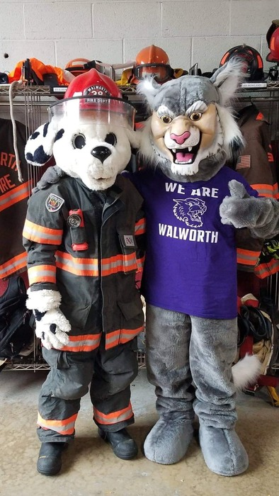 Wesley the Wildcat and Sparky the Fire Prevention Dog had fun teaming up for Fire Safety! #WalworthJ1