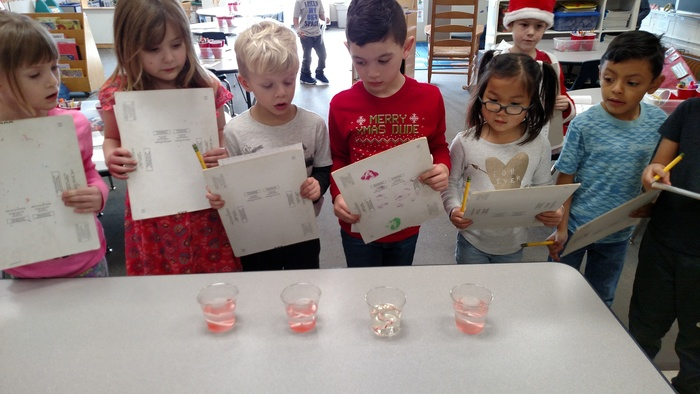 Candy cane language arts, math, and science fun in Miss Koltes' kindergarten class!