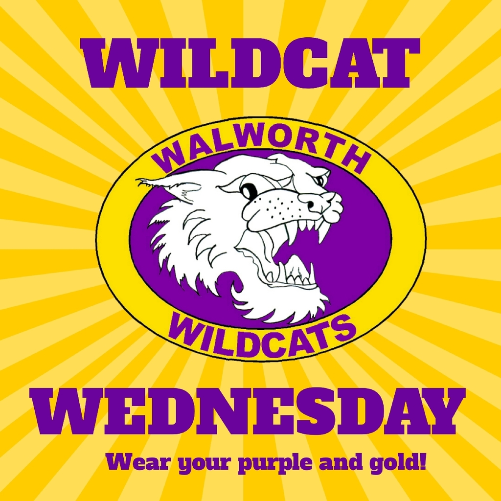 Wildcat Wednesday